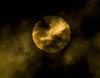 Venus o Solen,tum,F10211
