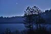 Svartedalen en kväll i april,tum,.FE23238